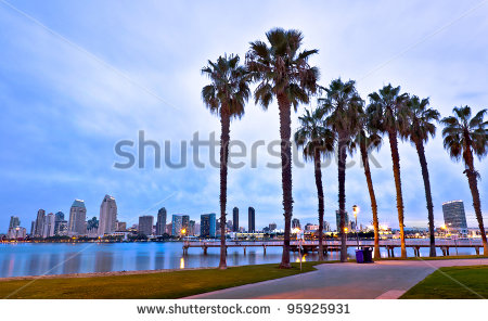 stock-photo-california-palm-trees-and-city-of-san-diego-california-usa-95925931